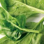 Benefícios de Saúde do Espinafre